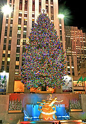 der weihnachtsbaum am rockefeller center new york. Black Bedroom Furniture Sets. Home Design Ideas
